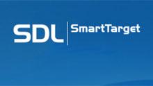 smart target logo